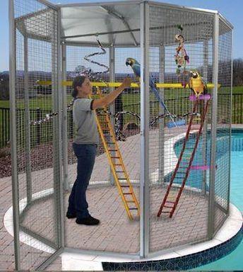 8' Indoor/Outdoor Aviary