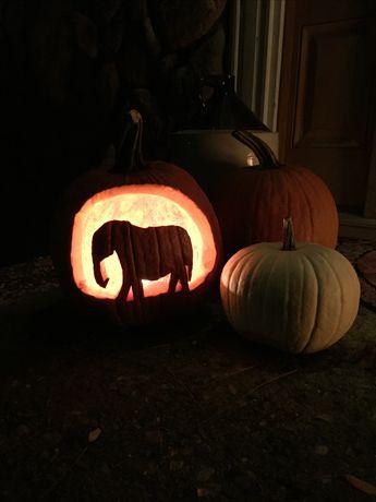 Elephant Pumpkin Carving