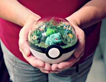 People are selling Pokeball terrariums and they're straight up adorable