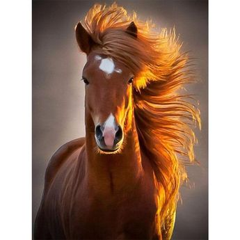Brown Horse - Diamond Painting Kit