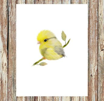 Bird prints, Canary bird, yellow canary, baby bird, bird art, bird painting, bird gift, baby shower gift, garden decor