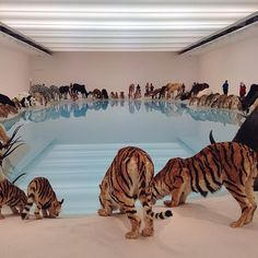 Cai Guo-Qiang, China b.1957 / Heritage (installation view) 2013 / 99 life-sized replicas of animals. Animals: polystyrene, gauze, resin and hide. Installed with artificial watering hole: water, sand, drip mechanism