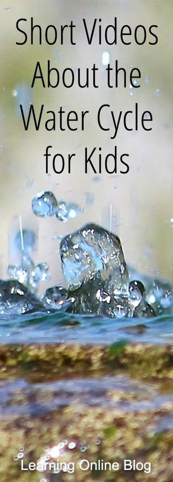 Short Videos About the Water Cycle for Kids