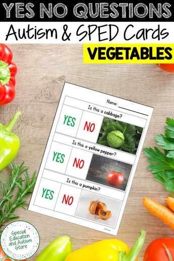 Yes No Questions Speech Therapy VEGETABLES Autism Visuals, Vocabulary Activities