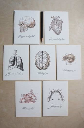 "Anatomical love note - ""Love. . .anatomically speaking"" series // anatomical drawings // quirky love notes"