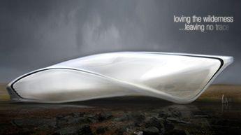 flowing blob sculpture