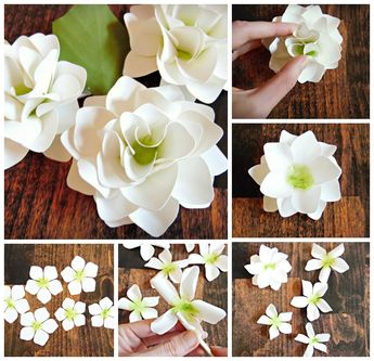 Free Giant Paper Flower Template. The Art of Giant Paper Flowers.