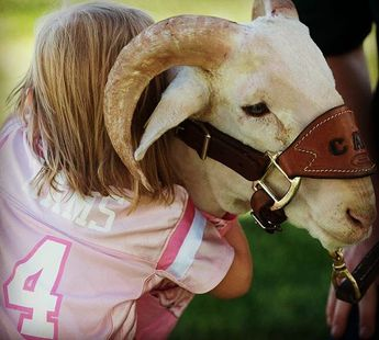 CAM the Ram. We heart you.