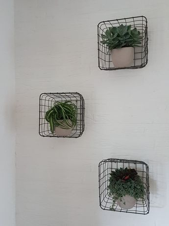 Wire baskets get extra decorative when you hang them on the wall with some nice plants in them