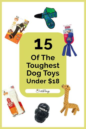 15 Of The Toughest Dog Toys For Serious Chewers Under $18