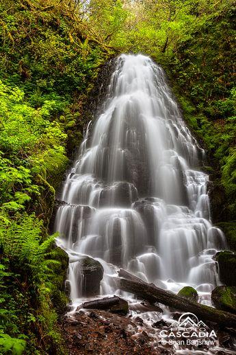 I love the cascading waterfalls!!!
