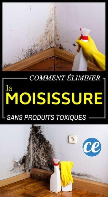 Comment Éliminer la Moisissure SANS Produits Chimiques.