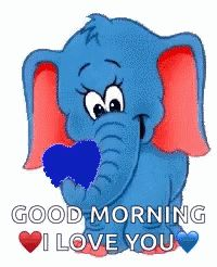 Good Morning Jollyzinho GIF - GoodMorning Jollyzinho Elephant - Discover & Share GIFs