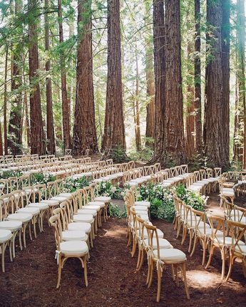 Instagram   Who wants a dreamy ceremony in the woods?😍🌲 Love this rustic set up captured by @josevilla 📸 Planning by @lauriearons | Florist @mindyricedesign