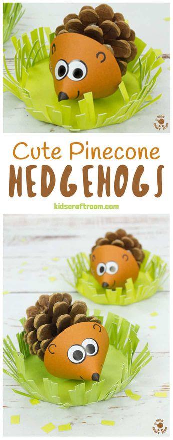 Cute Pinecone Hedgehogs