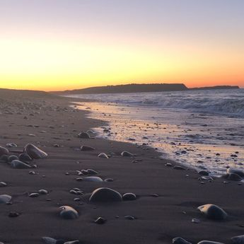 This video is about nothing and everything. #nofilter #lawrencetownbeach  This video is about nothing and everything. #nofilter #lawrencetownbeach