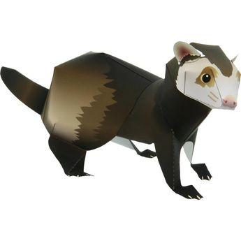 Ferret,Animals,Paper Craft,Europe,Mammals ,Animals,Paper Craft,Pet series,easy,easy