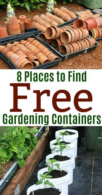 8 Places to Find Free Gardening Containers