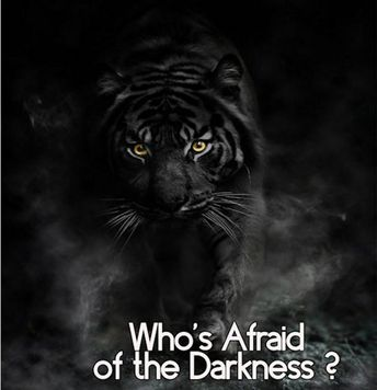 Who's Afraid of the Darkness 10