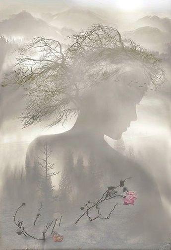 Immagini Bellissime/Beautiful Images ~ Il Magico Mondo dei Sogni