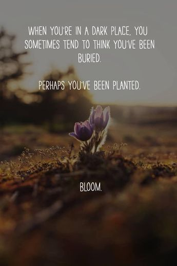 I choose to Bloom! Join our momentum class to help you go from stuck to unstuck