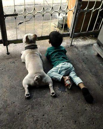 French Bulldog and Baby Boy guarding the house. Possiby cutest photo ever ❤❤❤