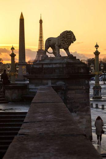 The lion - Place de la concorde, Paris