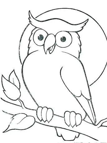 22+ Sketsa gambar kolase hewan burung terupdate