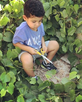 Ramzi challenged himself with a pair of scissors, turns out he can! 🤷🏼♀️ we picked vine leaves today and apparently this activity helps with bilateral coordination skills, strengthens the hand muscles and fine motor skills. Give ur kids a pair of scissors and let them cut cut cut ✂️. #kidsactivities #outdooractivities  %2
