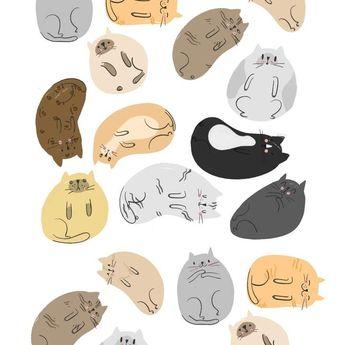 House Of Wonderland - Purrball Cat Print