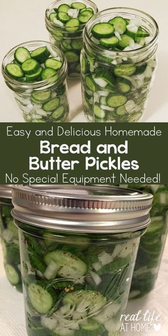 Delicious Bread and Butter Pickle Recipe (Quick and Easy)