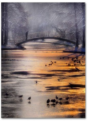 Trademark Global Cristian Andreescu 'Frozen Lake' Canvas Art - 24 x 18 x 2