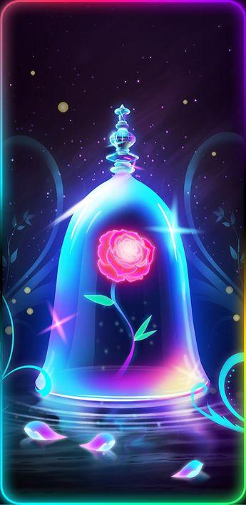 La rosa de la Bella y la Bestia 🌷❤