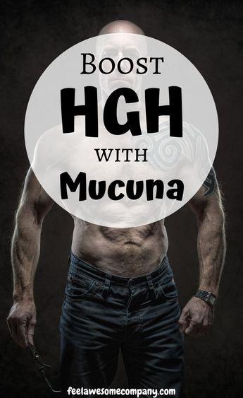 Mucuna Pruriens (A Helpful Guide for 2019) Learn more Here