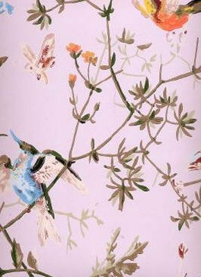 hummingbird wallpaper. beautiful #wallpaper #hummingbird
