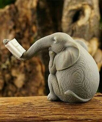 Elephants are known to move with a calm confidence in all aspects of life. They may not be known as the King of Beast, but they are as Royal as Royal can be.