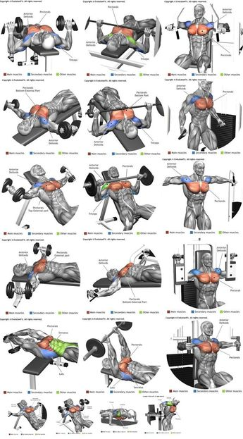 How To Get The Best Chest Workout