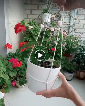 A quick way to turn a potted plant into a hanging plant.