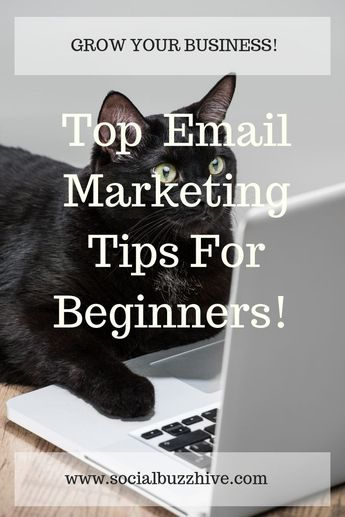 Top Pro Email Marketing Tips For Beginners