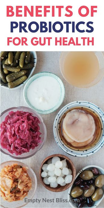 Probiotics vs Prebiotics: What You Need To Know For Gut Health