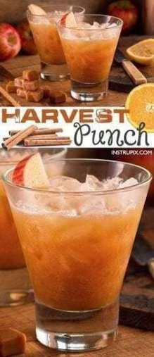20 BEST THANKSGIVING COCKTAIL RECIPES: FALL IDEAS BEVERAGES.