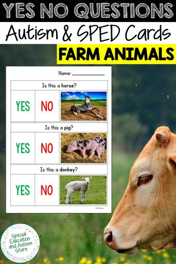 Yes No Questions Speech Therapy FARM ANIMALS, Autism Visuals