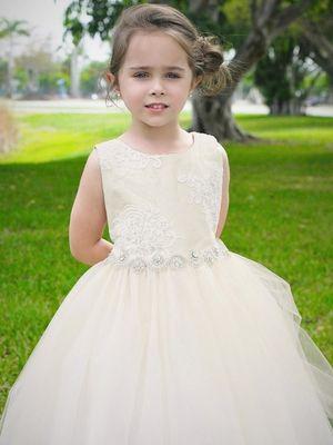 Ivory Luxurious Silk Top w/ Embroidered Mesh Overlay & Rhinestone Belt Dress