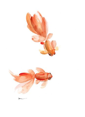 Goldfish Watercolor Painting, Pisces Zodiac Sign, Orange Red Fishes Home Decor, Gold Fish Art Print