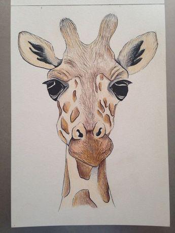 Visage de girafe a5 de dessin à l'aide du crayon et encre. Pièce originale sur…