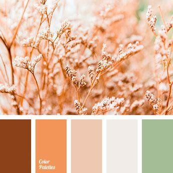 Color Palette #3883
