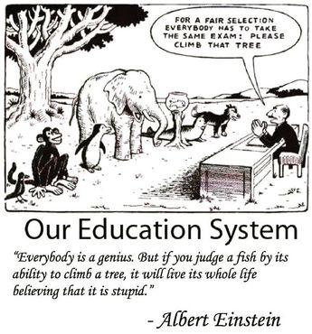 So true #education #system #different #smart #alberteinstein #quote #fair #life
