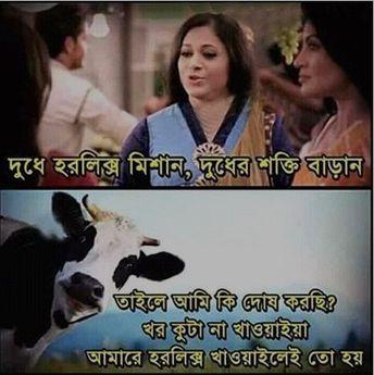 Bangla love sms for boyfriend