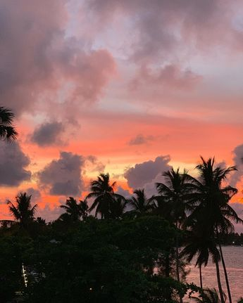 Sunset lover #nature #nofilter thanks #lasterrenassamaná for having it   Sunset lover #nature #nofilter thanks #lasterrenassamaná for having it