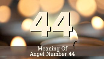 44 Angel Number Luvze Anti Feixista
